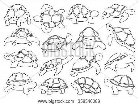 Sea Turtle Vector Illustration On White Background .tortoise Of Animal Vector Outline Set Icon. Isol