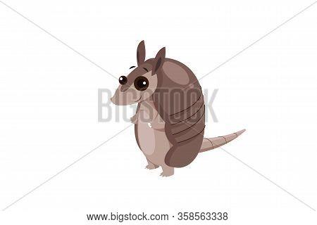 A Vector Illustration Of Isometric Armadillo Animal