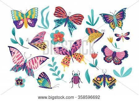 Butterfly Moth Insect Vector Illustration Set. Cartoon Insects Collection With Colorful Flying Butte