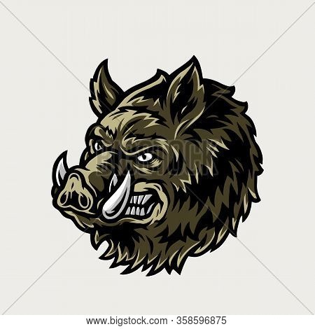 Colorful Vintage Cruel Wild Boar Head On Light Background Isolated Vector Illustration