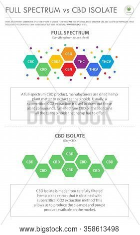 Full Spectrum Vs Cbd Isolate Vertical Business Infographic
