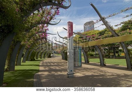 Brisbane, Queensland, Australia - 27th January 2020 : View Of The Grand Arbour Structure Covered By