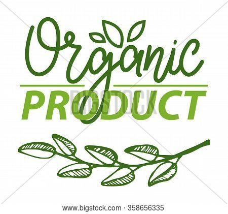 Bio Ingredient Organic Product Vector, Fresh Branch Of Herb With Foliage, Freshness Of Seasonal Food