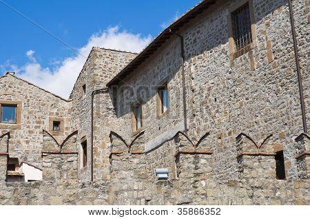 Historical palace. Viterbo. Lazio. Italy.