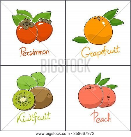 Set Of Tropical Fruits Isolated On White Background With The Name Of The Fruit , Persimmon And Peach