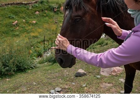 Close Up Girl Female With A Horse In The Background Of Mountains Nature. Happy Woman With An Animal