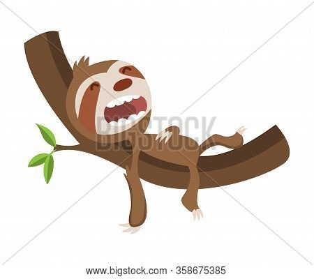 Cute Baby Sloth Sleeping On Branch. Vector Funny Sloth Illustration For Summer Design. Adorable Cart