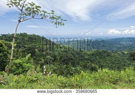 Overlooking Atlantic Coast From El Yunque Rainforest And Luquillo Mountains In Puerto Rico
