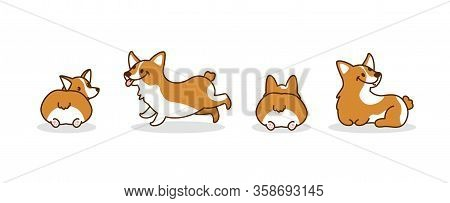Cute Corgi Dogs. Puppy. Hand Drawn Corgi Dogs. Vector