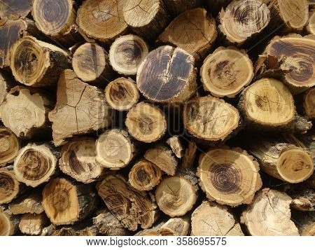 Pile Of Wooden Logs Stacked Together On Top Of Each Other. Wall Of Stacked Wood Logs As Background.