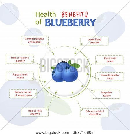 Health Benefits Of Blueberry. Blueberries Nutrients Infographic Template Vector Illustration. Fresh