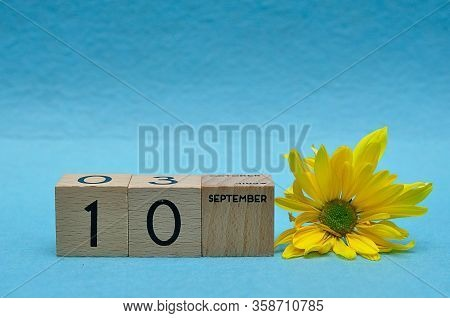 10 September On Wooden Blocks With A Yellow Aster On A Blue Background