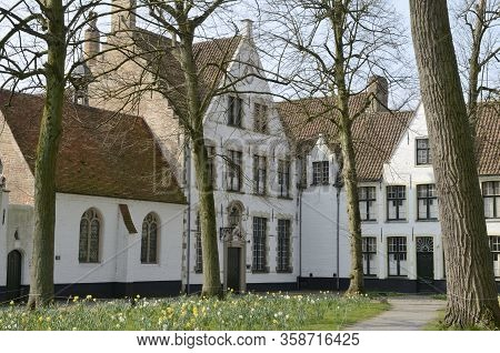 White Buildings At Brugge Beguinage