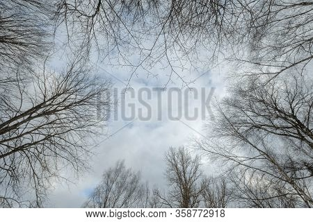 Banner Of Sky With Early Spring Forest. Great Background With Copyspace. Nature Landscape. Stock Pho