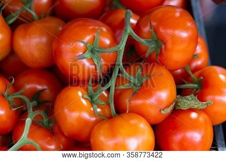 Close Up Of Fresh Organic Tomatoes, Solanum Lycopersicum, On A Farmers Market Stall