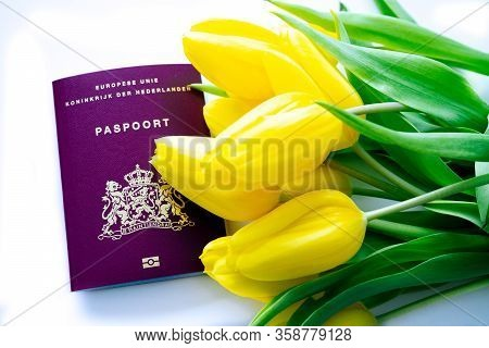 Top View European Biometric Passport Of Netherlands. Official Passport Of Netherlands With Yellow Tu