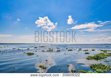 The Vast Horizon Of Algae Filled Backwaters With A Beautiful Clear Blue Sky Reflected On The Water S