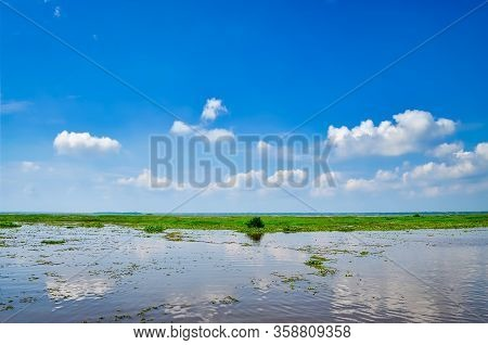 Algae Filled Backwaters With A Clear Blue Sky Reflecting In The Water. From Kerala, India.