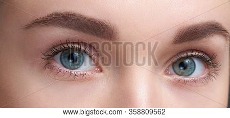 Eyebrows Care. Closeup Of Woman Beautiful Blue Eye, Perfect Shaped Brow, Long Eyelashes With Profess