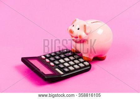 Economics And Business Administration. Piggy Bank Money Savings. Piggy Bank Pig And Calculator. Cred