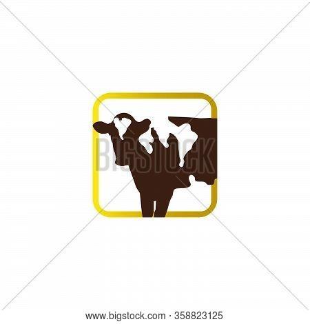 Cattle Angus Beef Holstein Cow Logo Design Vector Livestock Logo Template Illustrations
