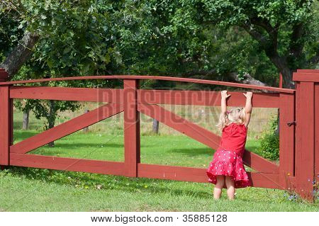 Little Girl Playing On A Gate