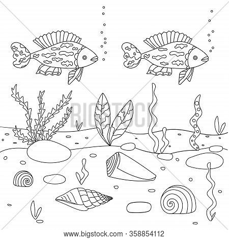 Vector Illustration With Algae, Shell And Fish, Sea Floor. Cute Square Page Coloring Book For Childr