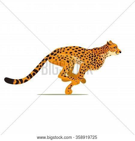 Gepard Running. Cheetah Animal Hunter In Wild Africa. Dangerous Leopard. Vector