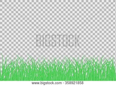 Green Beautiful Grass Meadow Border Vector Pattern. Spring Or Summer Plant Field Lawn. Grass Backgro