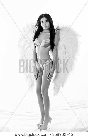 Girl Wear Lingerie Angel Feather Wings Accessory. Erotic Angel. Desirable And Tempting Lady. Purity