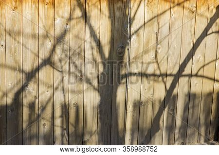 Wall Of Vertical Old Boards. Sun Shadow Falling On Old Boards. Shadow On The Boards. Wooden Boards W