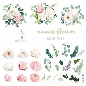 Blush Pink Rose And Sage Greenery, Ivory Peony, Hydrangea, Ranunculus Flowers, Eucalyptus Big Vector