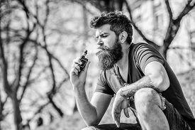 Smoking Device. Man Long Beard Relaxed With Smoking Habit. Man With Beard Breathe Out Smoke. Clouds