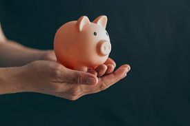 Female Hands Protect Pink Piggy Bank, Copy Space. Concept Of Saving Money Or Savings