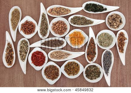 Large medicinal herb and spice selection also used in magical potions over papyrus background.