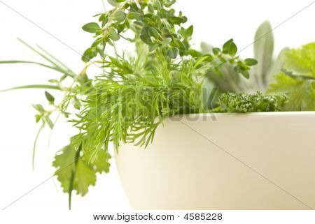 Fresh Herbs Closeup Rframe