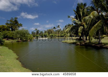 Wailua River Tropical Garden