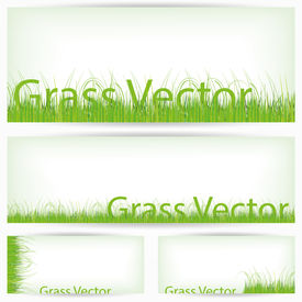 Green Grass Set, Isolated On White Background
