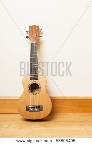 Ukulele on the floor