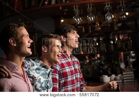 portrait of the fans in the bar