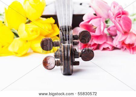 Schwarze alte Geige
