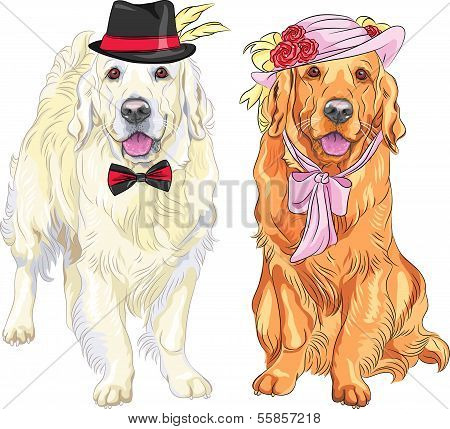 Vector Funny Pair Of Dogs Labrador Retriever Wearing Hats And Ties