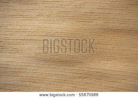 Japanese Elm Wood Surface - Horizontal Lines