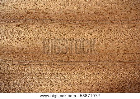 Bibolo Wood Surface - Horizontal Lines