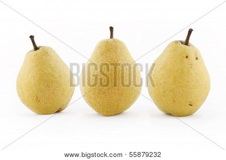Tues Pears On White Background
