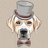 serious cartoon hipster dog Labrador Retriever in a gray silk hat pince-nez and bow tie poster