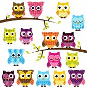 Vector Set of Patchwork Or Quilt Style Owls and Branches poster