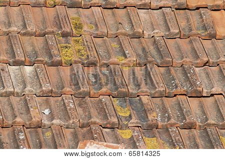 Rooftile