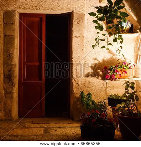Courtyard with plants at night