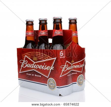Budweiser Six Pack Side End View